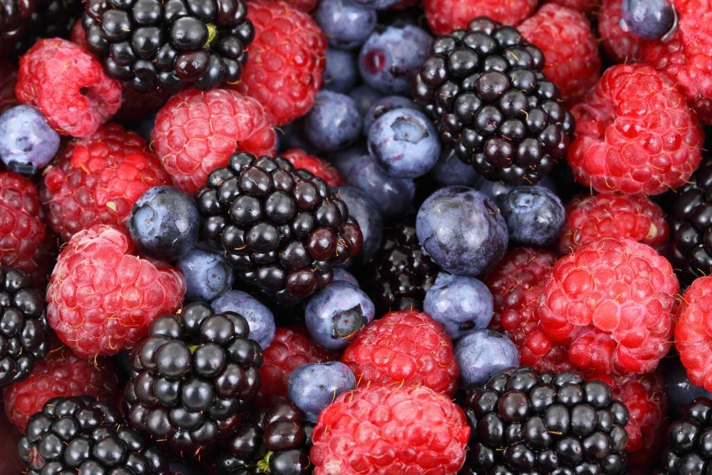 pregnancy superfood berries- raspberry, strawberry, blueberry, and blackberry.