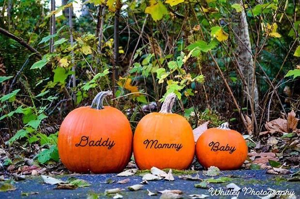 pumpkin pregnancy reveal