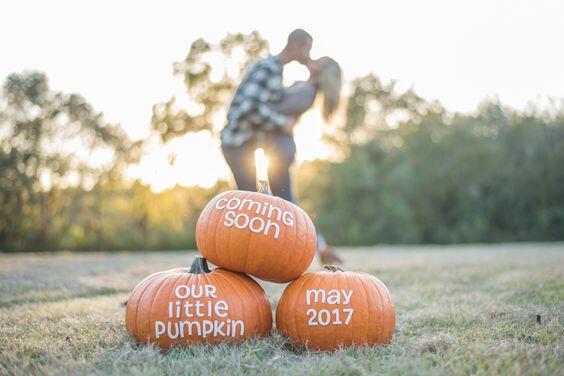 little pumpkin coming soon announcement